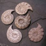 Mini Ammonite