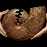 6.Large Ammonite Sutures 4